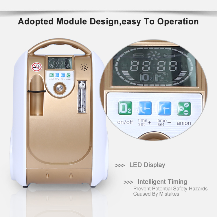 Customized Medical Portable O2 Concentrators Continuous