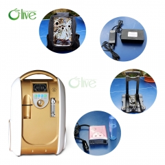 110V Anion Small Medical Portable Oxygen Concentrator For Health Care
