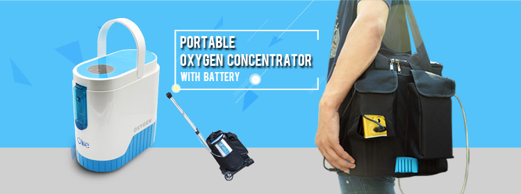 oxygen concentrator portable price