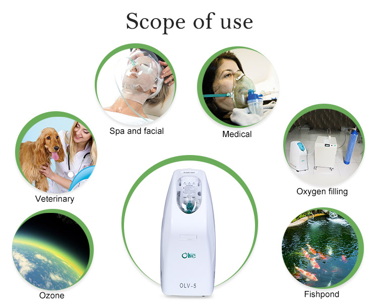 Lightweight Psa Medical Oxygen Concentrator With Atomizer